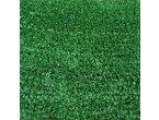 Pasto alfombra en venta