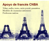 Apoyo frances cnba profesora de frances nativa