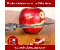 Diseño web profesional - seo