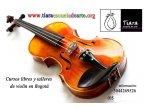 Academia de violín sector salitre j vargas