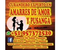 MAESTRO OFRECE RETORNOS DE PAREJA EN 48H