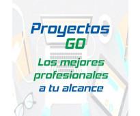 ProyectosGo