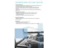 Desarrollador .NET Core / React,js