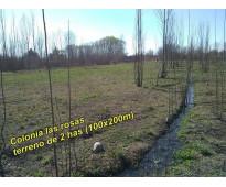 OPORTUNIDAD PRECIO RE-BAJADO ! TERRENO 2HAS C/DERECHO DE RIEGO – SOBRE RUTA 92-...