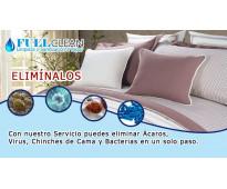 Desinfeccion  certificadas  control de plagas