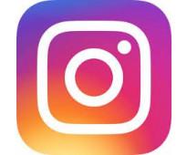 desarrollo de instagram para empresas