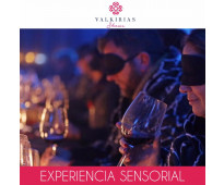 EXPERIENCIA SENSORIAL para Eventos - By Valkirias Shows