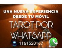 Vidente 1161520167 que esperas? Llama ya!!!