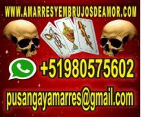 PRESTIGIOSO VIDENTE - TAROT VIRTUAL