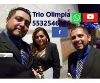 contratacion de trios musicales estado de mexico