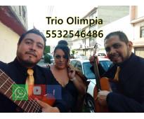 trios musicales estado de mexico