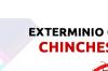 Fumigación de chinches, cucarachas y más, solución garantizada y segura