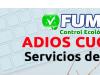 Fumigación efectiva y segura de chinches, roedores, solución garantizada