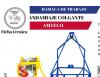 CANASTILLA DE TRABAJO EN ALTURAS INDIVIDUAL AMYECO