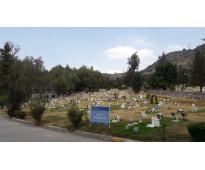 Jardines del Recuerdo fosa 4 gavetas Jardín La Misericordia