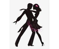 Clases y Coreografias de Baile a domicilio