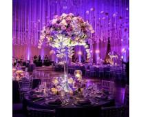 iluminacion para bodas y eventos en Cartagena