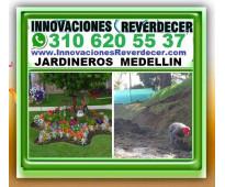 ⭐ JARDINEROS MEDELLIN, Paisajismo, Diseño Jardines, Verticales, Jardineria, Sist...