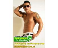 FLAVIO VEDETTO SAN JOSE DE MAIPO FONO  +569 97082185