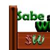 Sitios webs profesionales - tiendas virtuales - Aulas virtuales en sabeweb.com