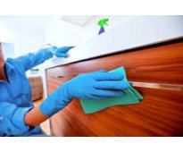 Se busca personal de limpieza para oficinas, escuelas, institutos, universidades