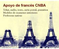 ¿estás en el nacional buenos aires? ¡aprobá francés!