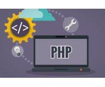 Programación profesional. curso de php
