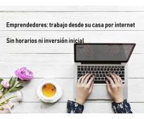 Emprendedores para trabajo desde casa por internet