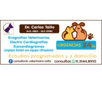 Atención veterinaria en consultorio y a domicilio