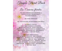 Terapia floral bach con orientación psicoterapéutica