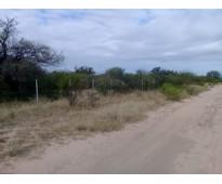 2000 hectáreas ganadero  en lujan