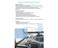 Analista funcional técnico