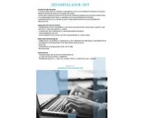 Desarrollador .net