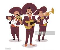 Se buscan guitarristas jovenes para mariachi