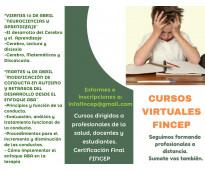 Cursos virtuales autismo