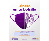 Distribuidores independientes home office