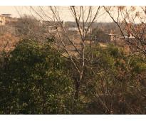 Se vende lote en bialet masse ubicado a 50 metros del arroyo tanti
