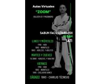 Clases virtuales on line de taekwondo itf villa urquiza aulas virtuales: niños y