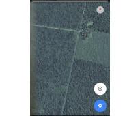 Venta hectáreas campo