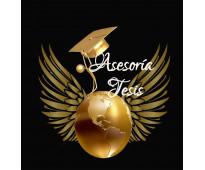 Asesoría de tesis, trabajos de grado- clases online