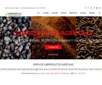 Mcm diseño web: diseño, hosting y mantenimiento de sitios web