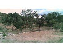 Rancho san luis potosí
