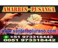 único maestro peruano - tarot