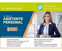 Tu propia asistente virtual desde $ 880 pesos