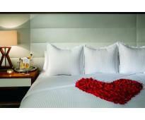 Coyoacán te espera en una romantica suite
