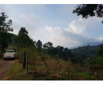 Terreno rústico paraje totoltepec zacapoaxtla 20 hectáreas 13 m2 puebla