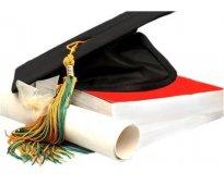 Monografias, cursos intersemestrales y ensayos