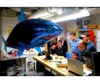 Tiburon a control remoto