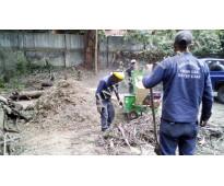 Mulch organico, chips de madera triturada, servicio de chipeadora para madera