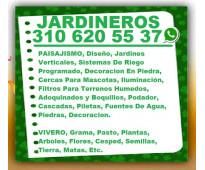 ⭐ JARDINEROS, Paisajismo, Diseño Jardines, Verticales, Jardineria, Vivero, Siste...
